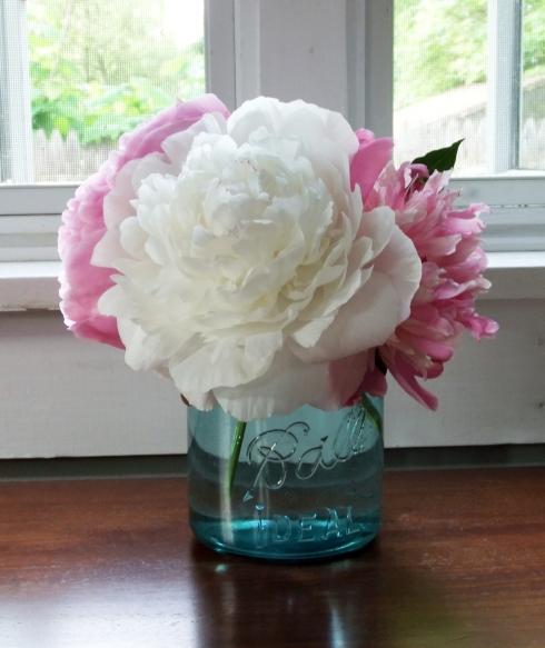 Garden Peonies in Vintage Mason Jar