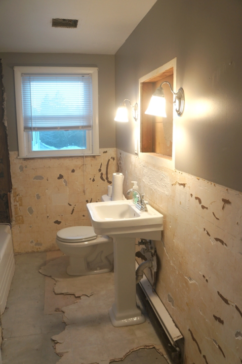 bathroom gut progress1