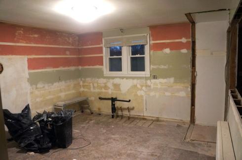 Kitchen gut progress1
