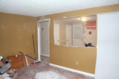 living room gut2