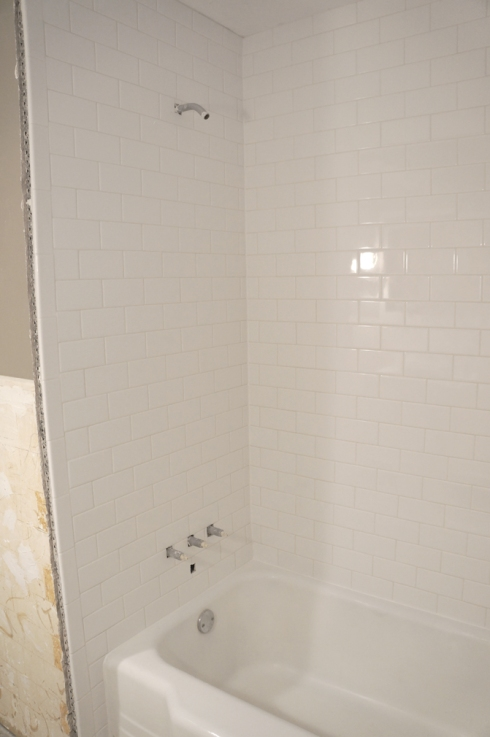 bathroom shower progress1