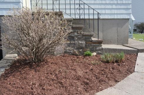 w11 front garden
